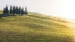 light italian landscape nature
