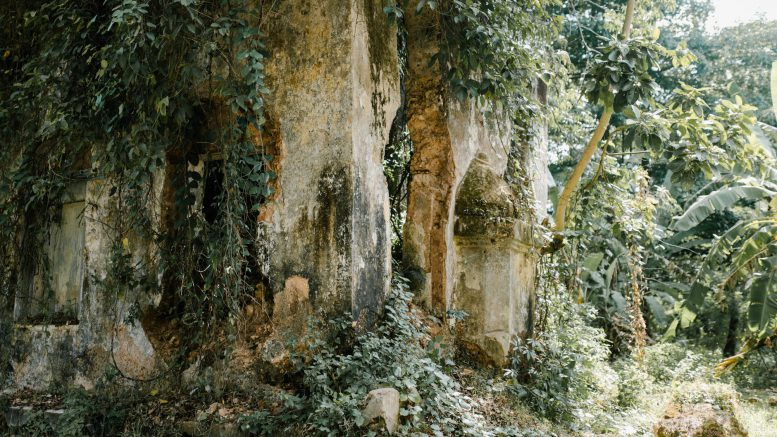 old temple in rock in forest
