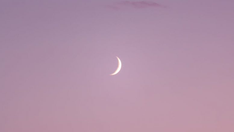 crescent moon on a pink sky